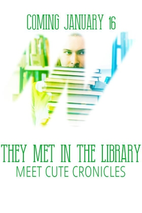 The Met in the Library cover reveal image by Nell Iris